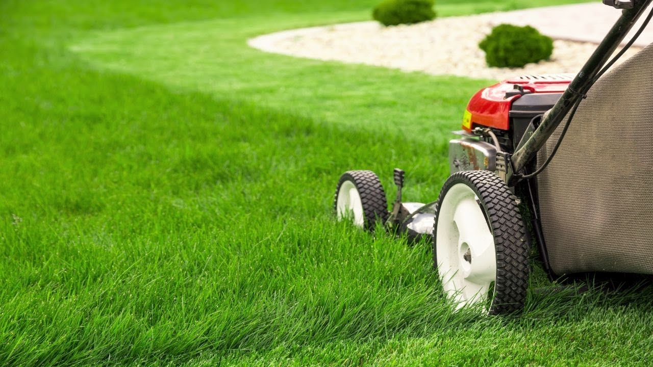 How To Mow The Lawn With Your Lawn Mower