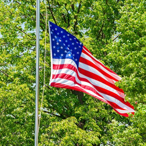American flag at half mast in the trees