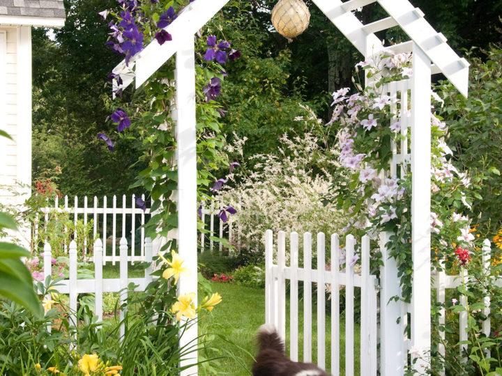 Charming Garden Dreaming – The Inspired Room