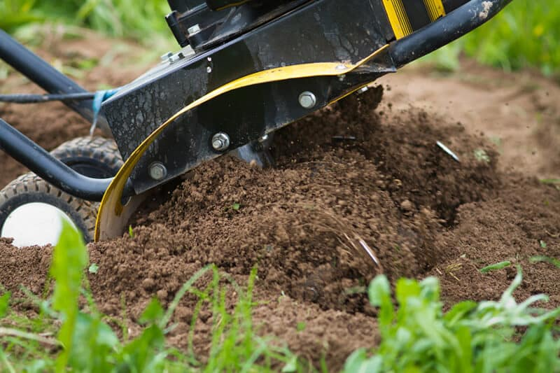 Most Common Gardening Mistakes to Avoid