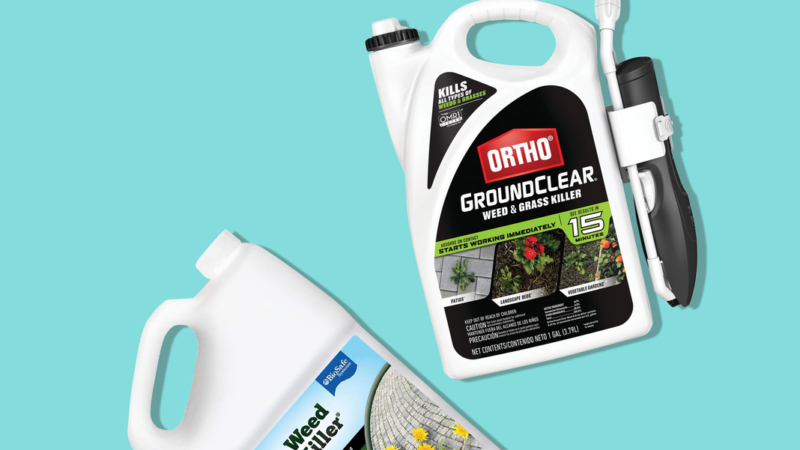 8 Best Weed Killers of 2021