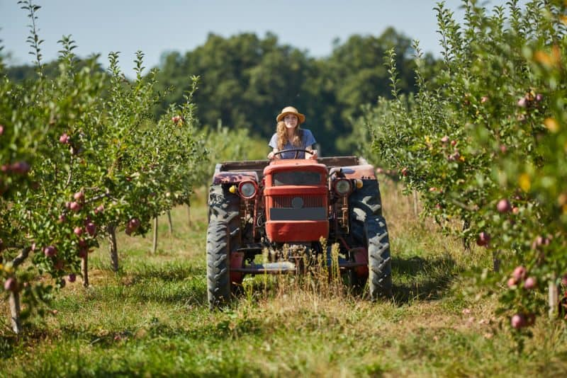 What to Consider When Getting a Tractor for Your Homestead