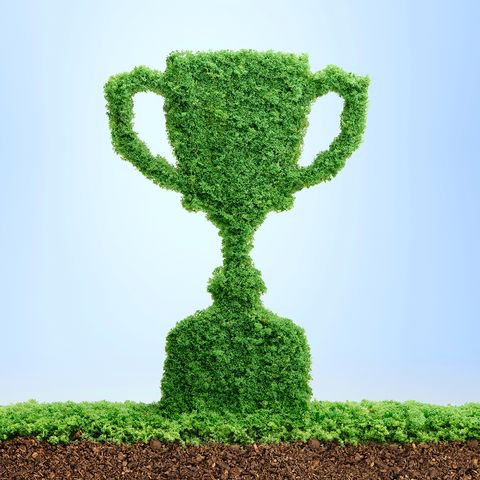 grass growing in the shape of a trophy cup, symbolising the care and dedication needed for success