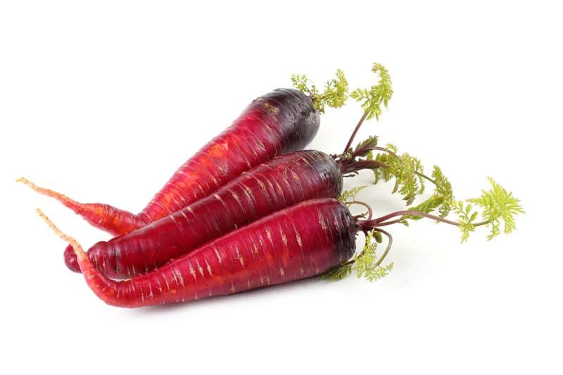 18 Best Carrot Varieties to Grow for a Colorful Harvest