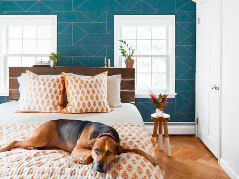 15 Stylish Bedroom Accent Wall Ideas