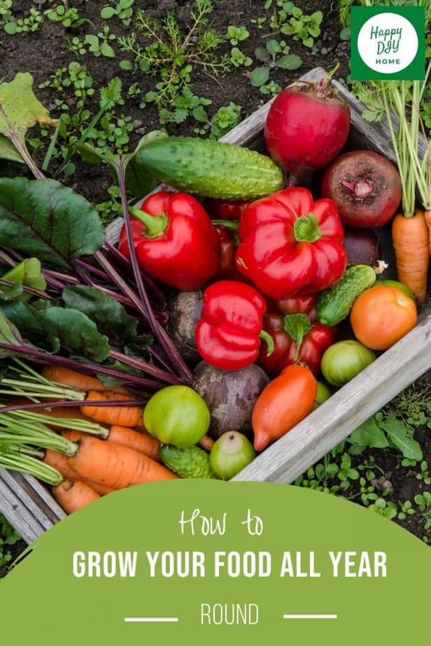 Grow Your Own Food 2