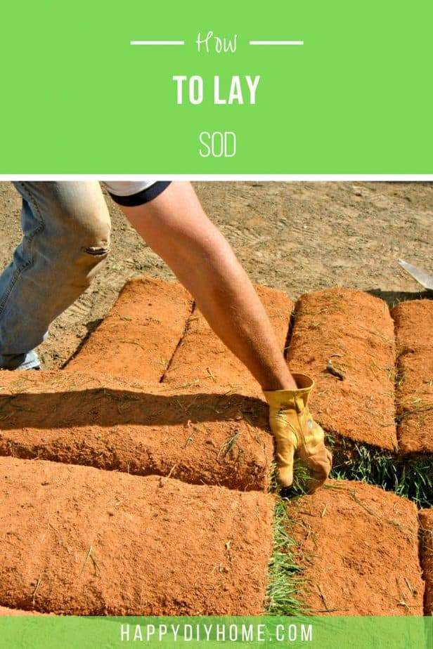 How to Lay Sod 1