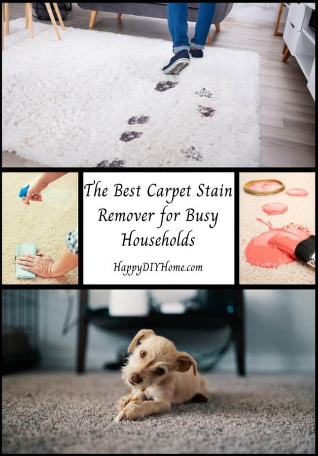 The Best Carpet Stain Remover for Busy Households Cover