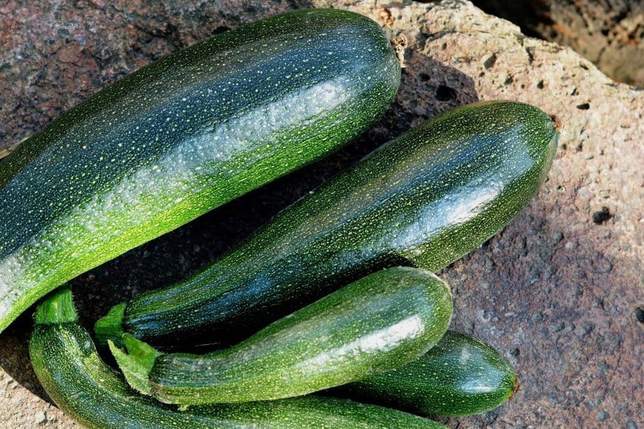2 Unlike winter varieties that can be stored for a prolonged period summer fruits such as zucchini are best used fresh