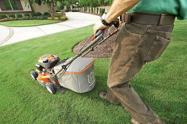 5 Mowing keeps grass healthy