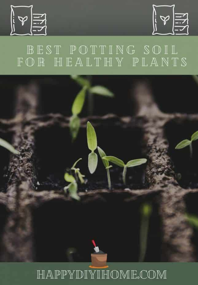 Best Potting Soil for Healthy Plants Cover