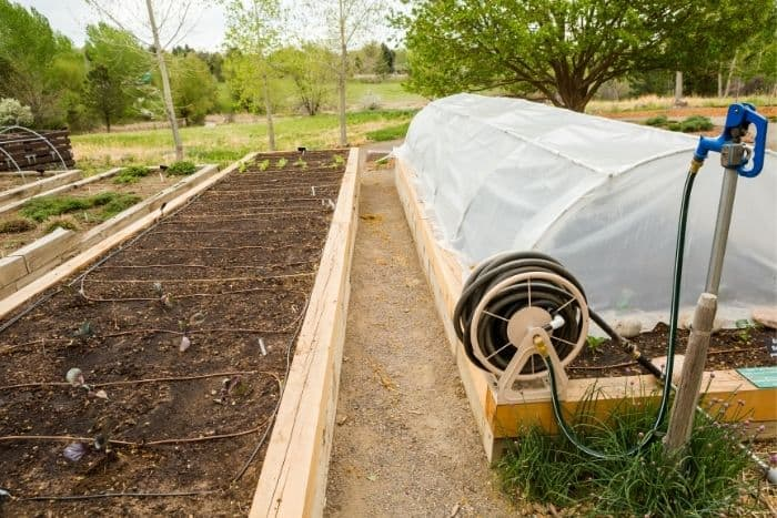 6. different features of a community garden