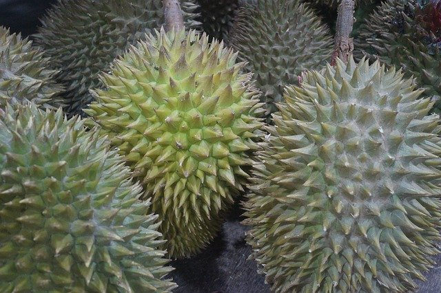 23 Durian