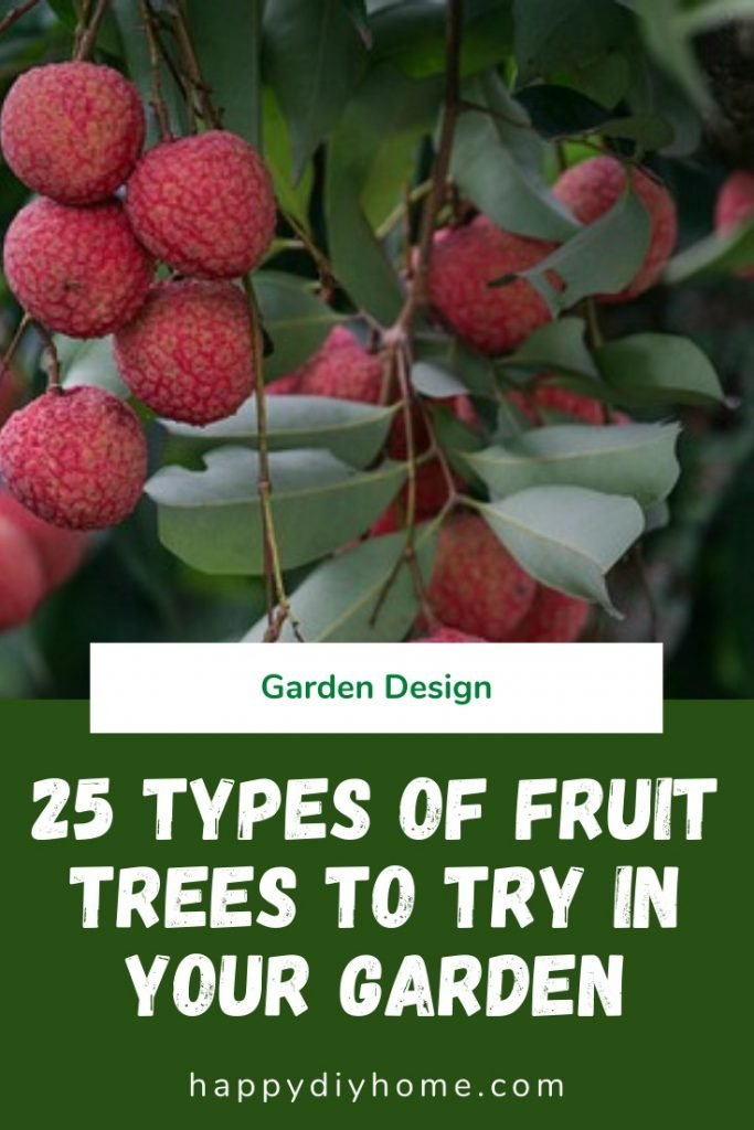 Types of fruit trees 1