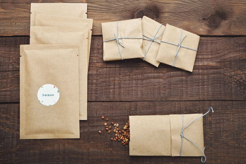 How to Harvest and Save Seeds from Your Garden