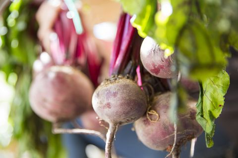 what to grow in November beets